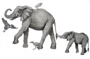 Elephant Mama Drawing