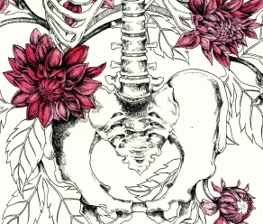 burton-board-original-drawing-of-dahlias-detail-2