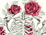 burton-board-original-illustration-roses-detail-1