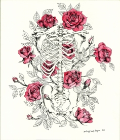 Original illustration with roses